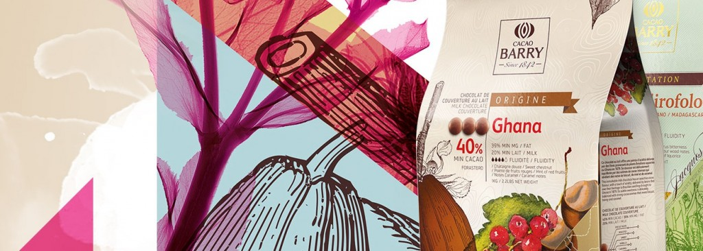 4-packaging-design-trends-to-watch-out-for-in-2016-Cacao-Barry-Brandfolder.com_